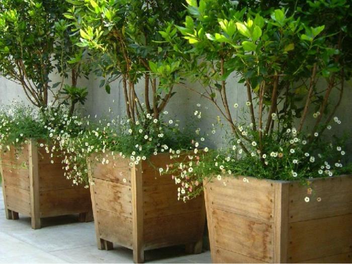 pflanzkübel-holz-mit-bepflanzung-für-außenbeireich