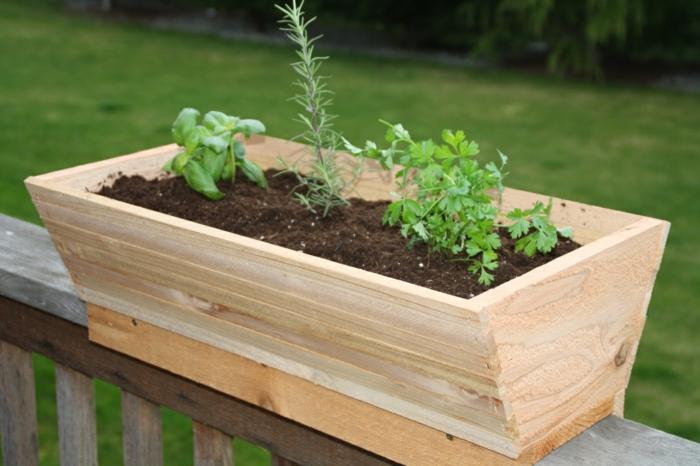 pflanzkübel-klein-für-terrasse