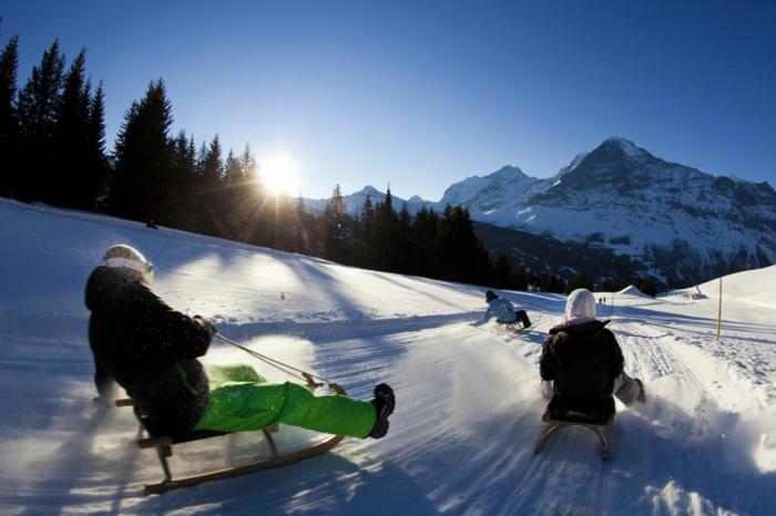 schlitten-fahren-winterberg-rodeln-unikale-gestaltung