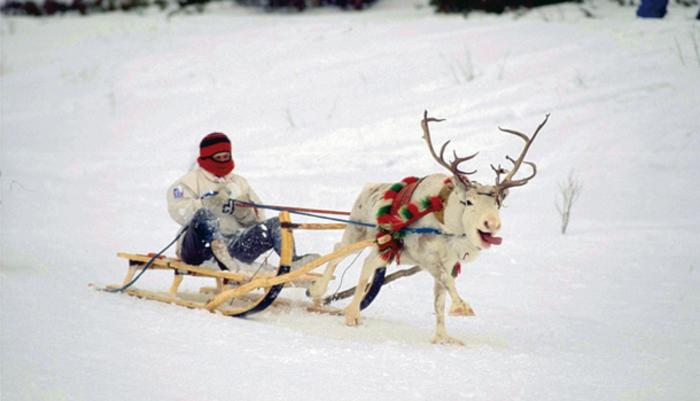 schnee-schlitten-unikales-foto-von-einem-kind