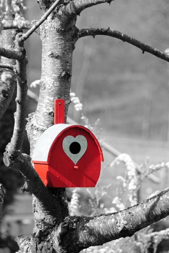 schwarz-weißes-Foto-Baum-dekoratives-vogelhäuschen-rot-weiß