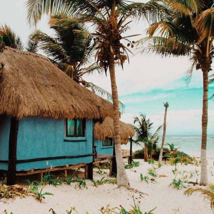strandhäuser-unikales-kleines-haus-und-viele-palmen