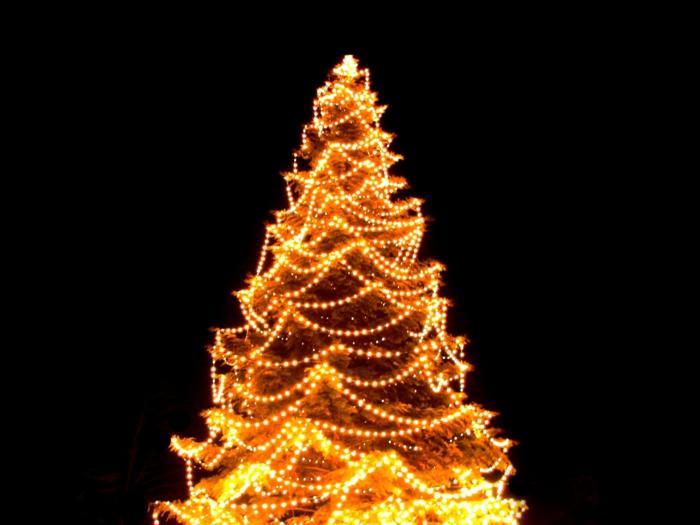 tannenbaum-künstlich-led-beleuchtung-schwarzer-hintergrund