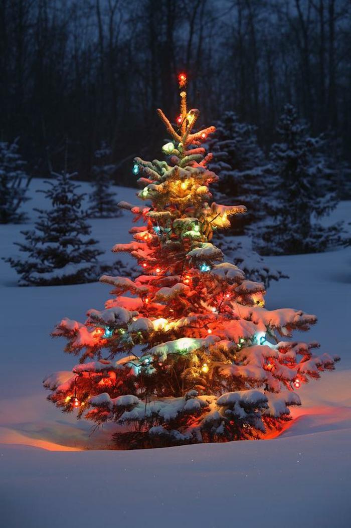 unikale-weihnachtsbaum-deko-für-außen