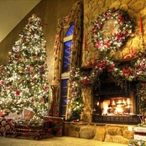 Weihnachtsbaum mit Beleuchtung: 40 unikale Fotos!
