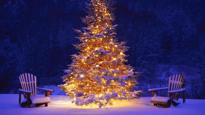 weihnachtsbaum-mit-beleuchtung-wunderschönes-ambiente