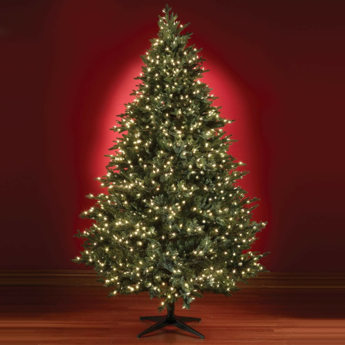 weihnachtsbeleuchtung-geschmückte-tannenbäume