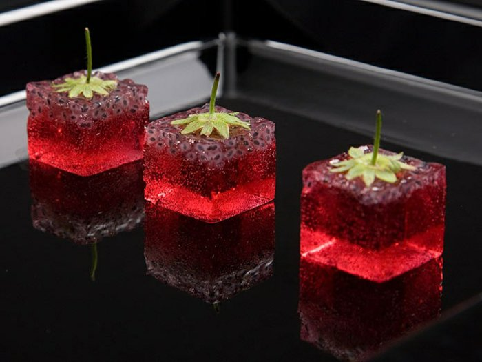 0-molecular-gastronomy-kochen-mit-stickstoff-kulinarische-Kunst-Art-Gerichte