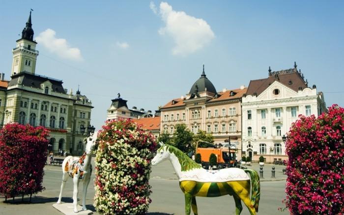 Novi-Sad-Serbien-städtereise-europa-europas-schönste-städte