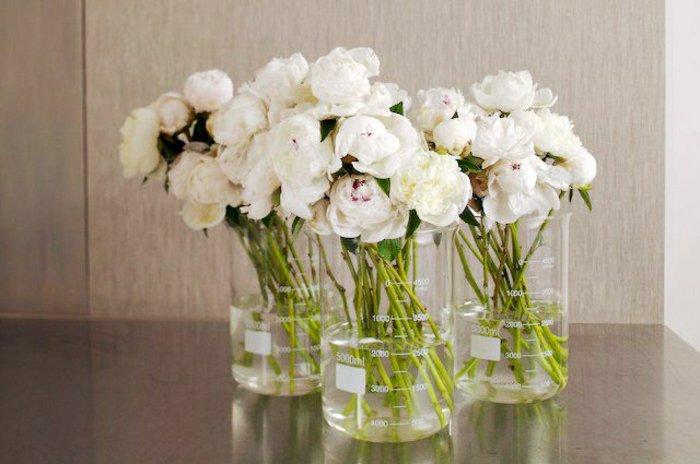 mit-extravaganten-vasen-dekorieren-weiße-Pfingstrosen