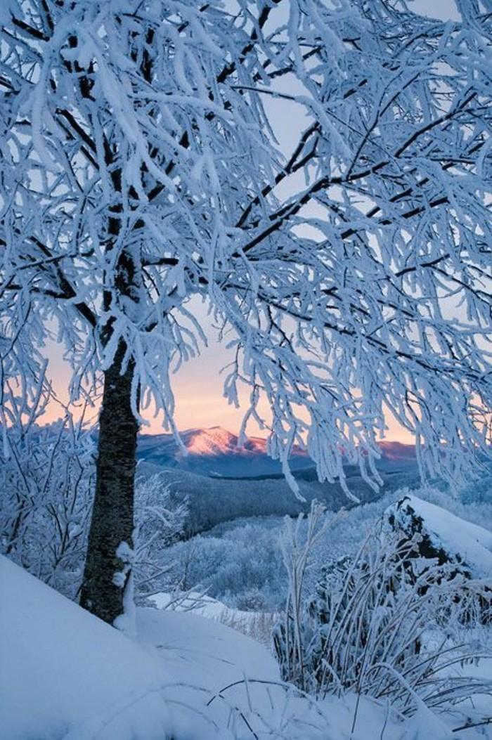 Ausblick-auf-die-Alpen-Gebirge-bedeckt-mit-Schnee-romantisches-Winterbild