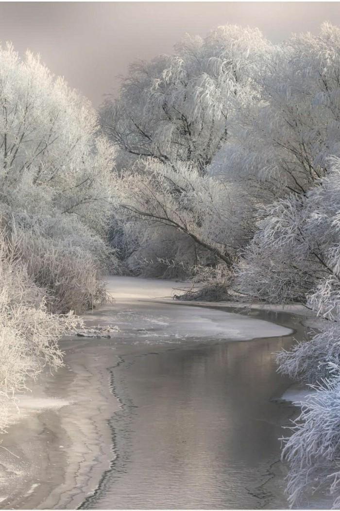 Fotografie-mit-Wintermotiven-gefrorener-See-Zweige-bedeckt-mit-Schnee