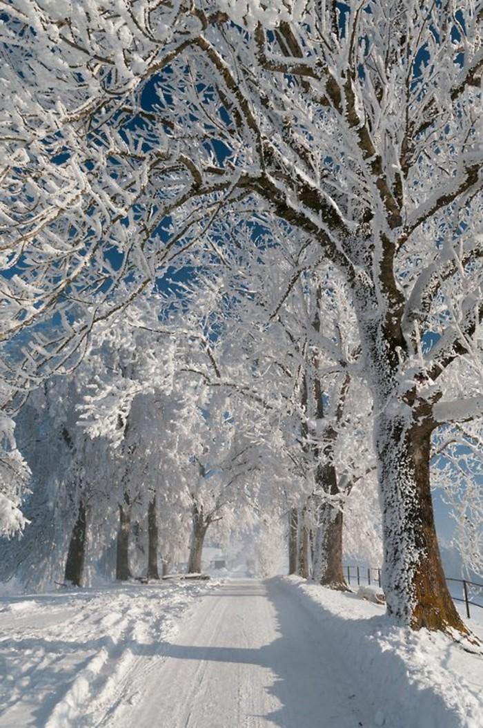 Fotografie-mit-Wintermotiven-stimmungsvolle-Schneemotive-Weg-im-Schnee