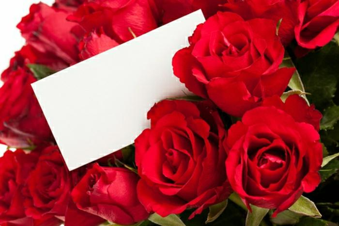 Rosenstrauß-verschicken-valentinstag-fotos
