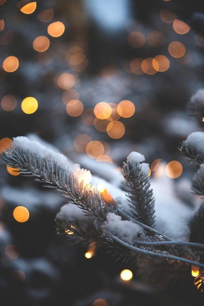 Winterbilder-Weihnachten-Tannenzweige-bedeckt-mit-Schnee-kleine-Leuchten