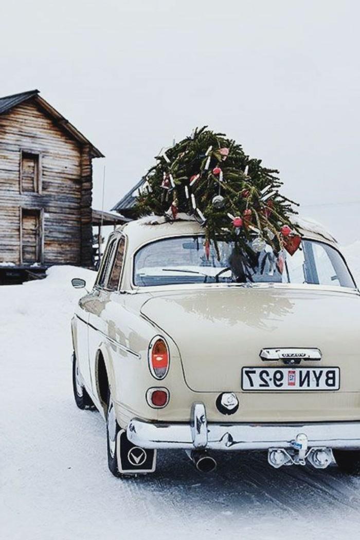Winterbilder-Weihnachten-klassisches-Modell-Volvo-Tannenbaum