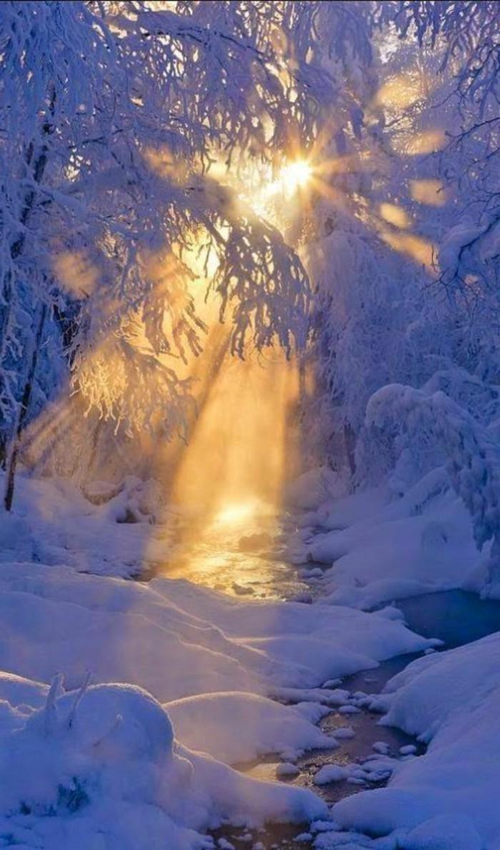Winterimpression-Sonnenschein-im-Wald-alles-in-Schnee