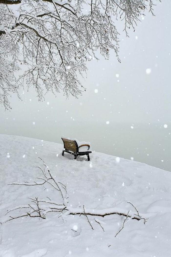 Winterlandschaft-Bilder-viel-Schnee-Bank