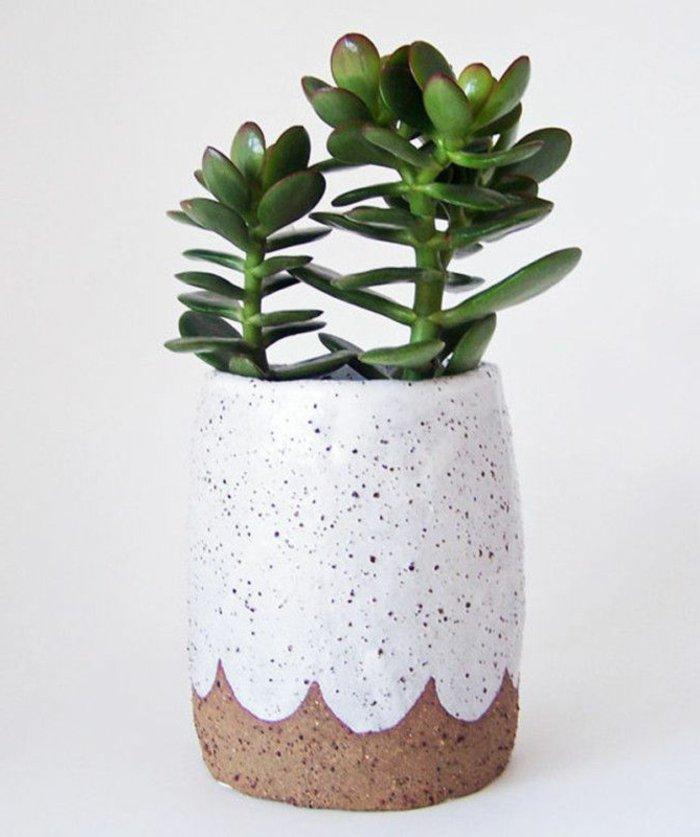 Zimmerpflanze-in-originellem-Pflanzentopf-pflanzen