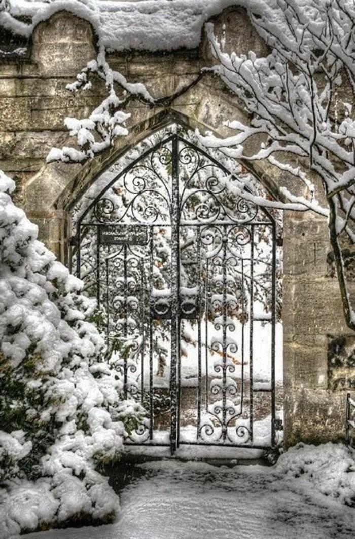 aristokratisches-Winterbild-Tor-aus-Eisen-Bäume-bedeckt-mit-Schnee
