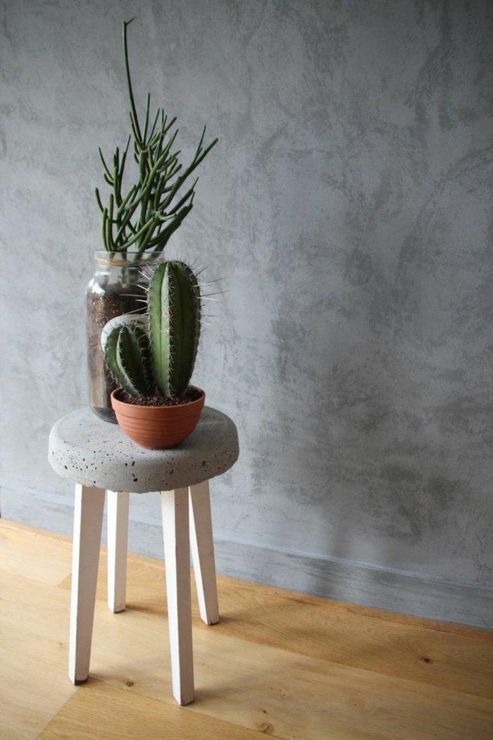attraktive-Zimmerpflanzen-exotische-Wahl-für-zu-Hause