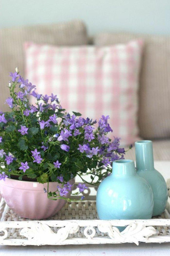 blühende-Zimmerpflanzen-für-zu-Hause-lila-Blüten