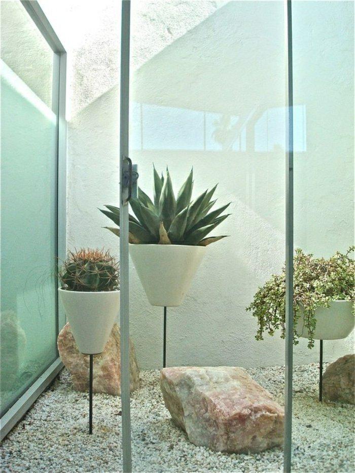 exotische-Grünpflanzen-und-blühende-Zimmerpflanzen