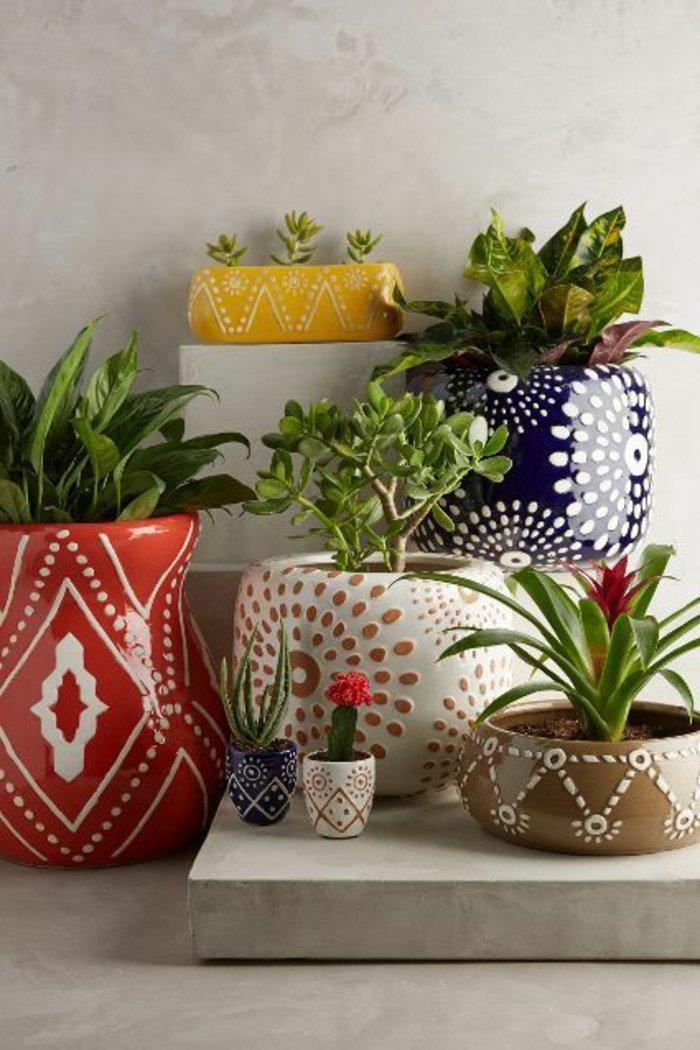 exotische-Topfpflanzen-Kakteen-Pflanzentopf-mit-interessantem-Muster