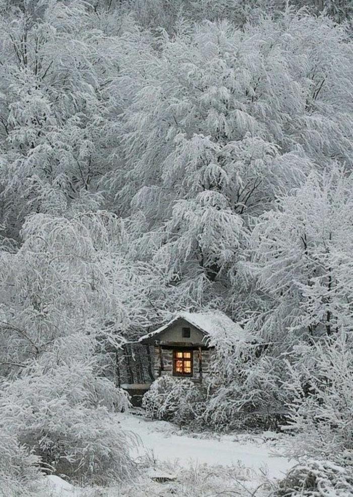 kleines-gemütliches-Häuschen-unter-den-Bäumen-bedeckt-mit-Schnee-romantisches-Winterbild