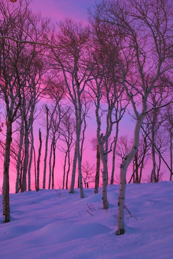 malerische-Fotografien-mit-Wintermotiven-schöne-Winterbilder-Sonnenuntergang