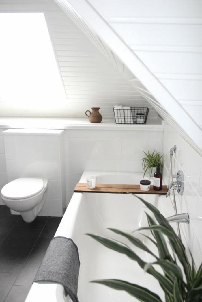 moderne-bäder-schöne-gestaltung-weiße-wände-grüne-pflanze