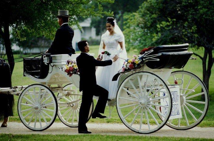 romantische-Hochzeitsfotos-Brautleute-mit-Kalesche