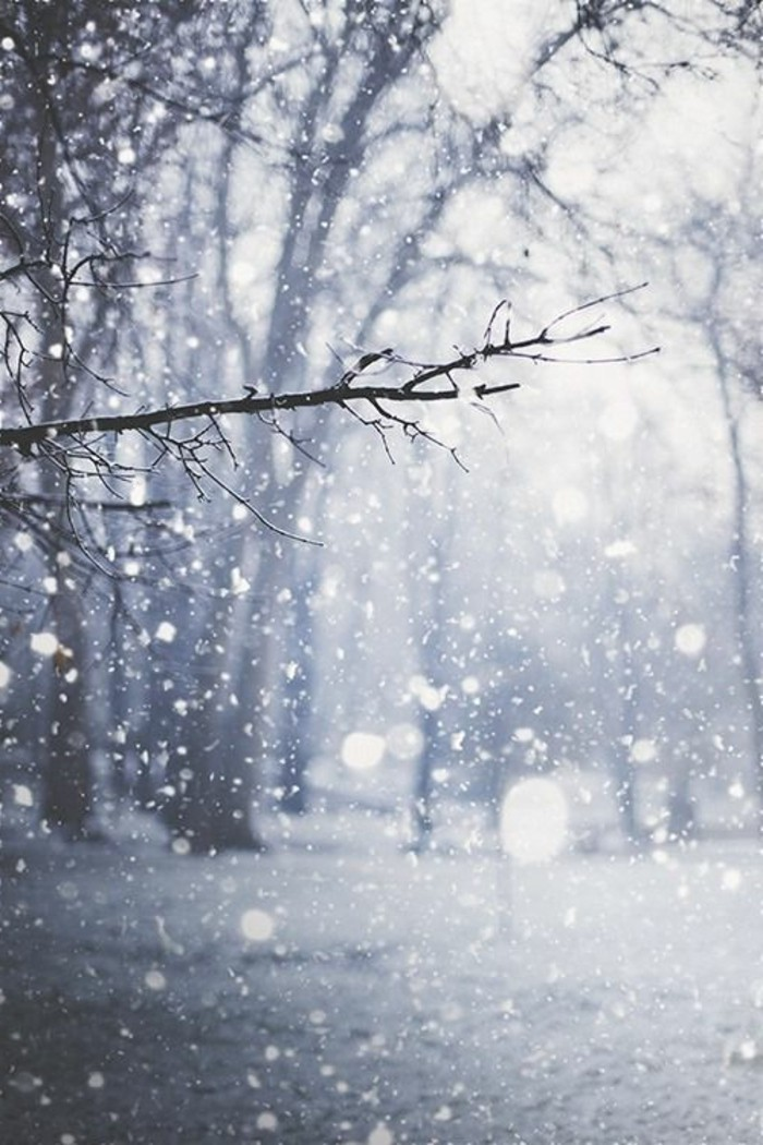schöne-Winterbilder-sympatische-Schneeflocken-romantisches-Bild