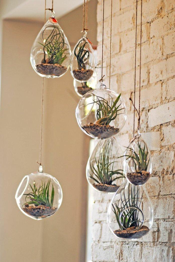 schöne-Zimmerpflanzen-auf-originelle-Weise-arrangieren