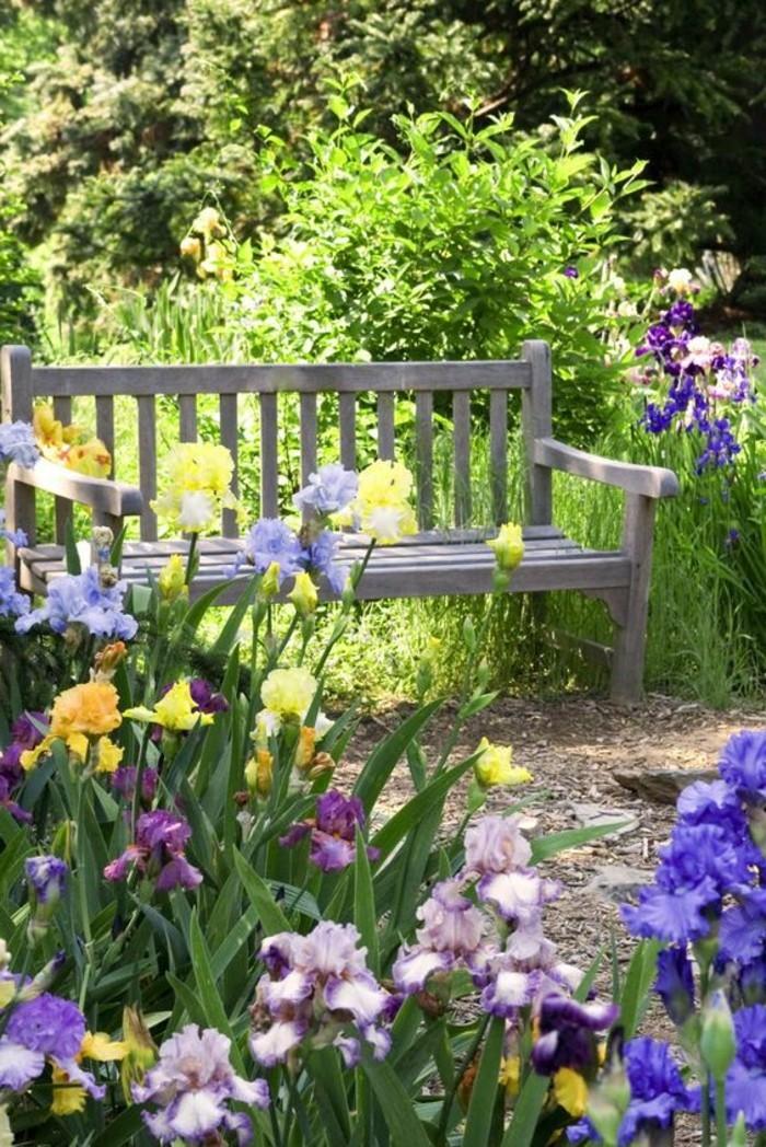 Garten-mit-lila-Blumen-und-schlichter-hölzernen-Bank