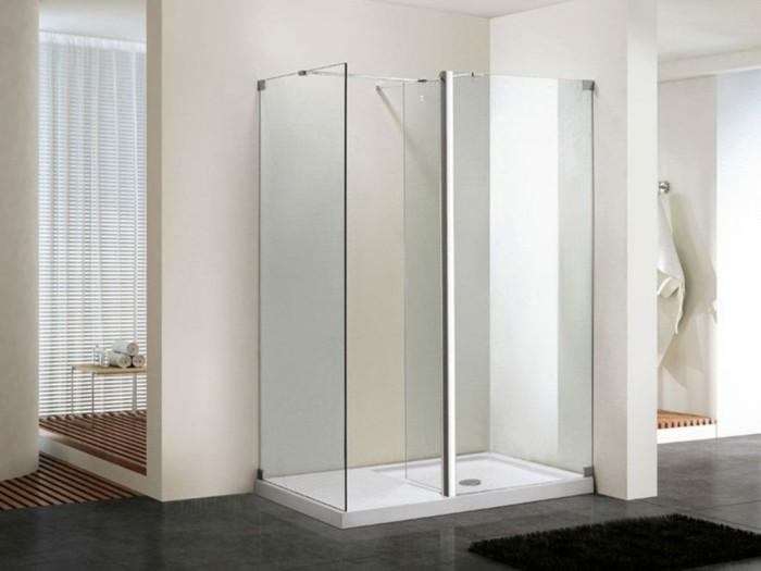 duschkabine-aus-glas-minimalistische-gestaltung-von-badezimmer