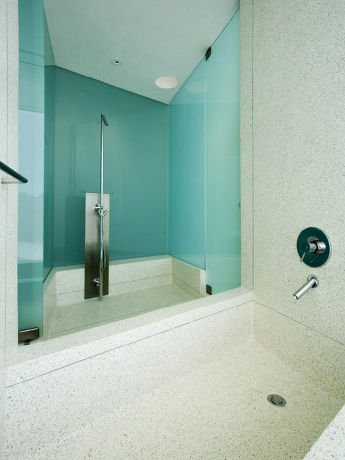 frisches-badezimmer-in-zwei-farben-super-glaswand-dusche