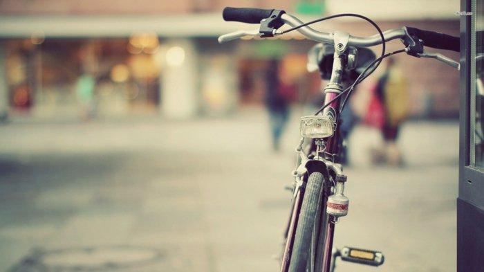 retro-Fahrrad-geeignet-für-Spaziergänge