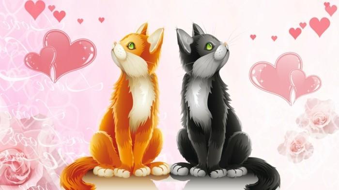 tolle-tiere-zwei-katzen-valentinstag-bilder