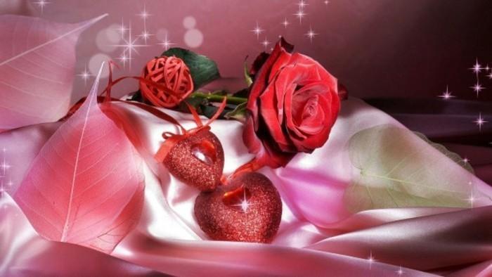 valentinstag-bilder-rose-lila-hintergrund