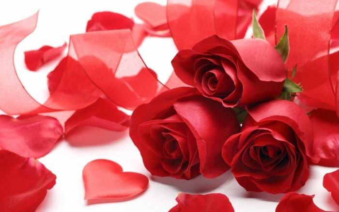 valentinstag-bilder-unikaler-blumenstrauß-von-roten-rosen