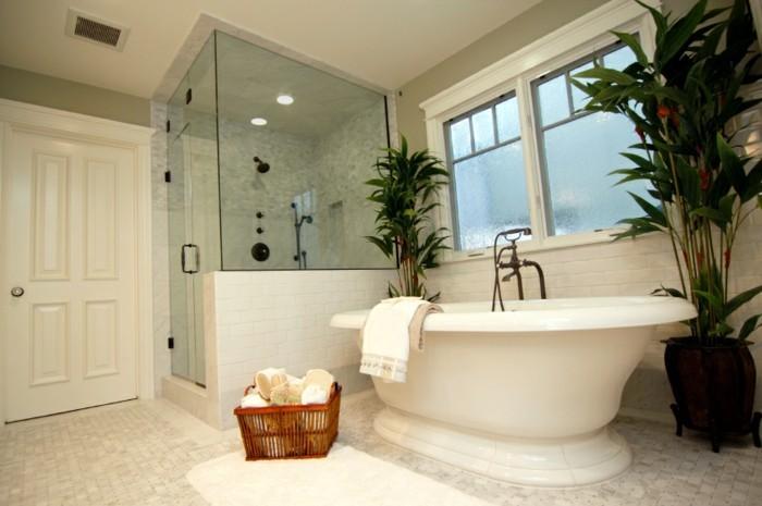 walk-in-dusche-aus-glas-neben-einer-modernen-weißen-badewanne