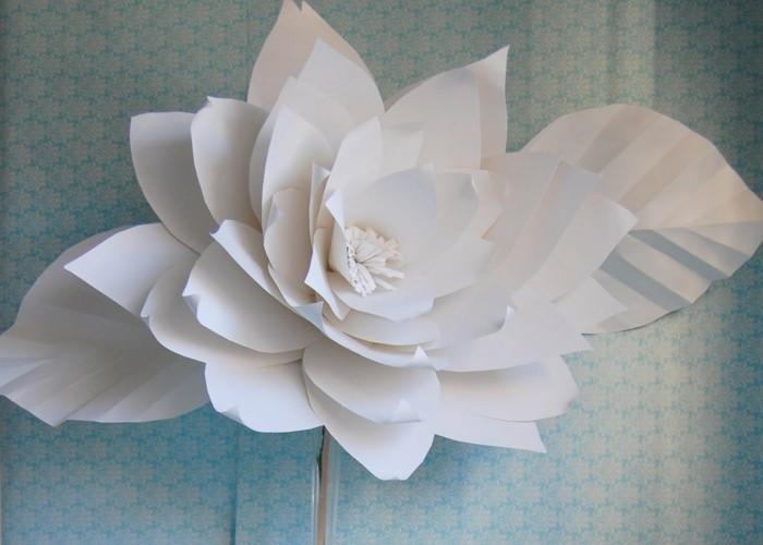 weiße-rose-wunderschönes-desgn-tolles-bild
