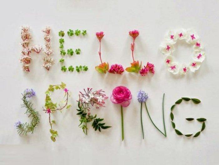 1-frische-Frühlingsbilder-Hello-Spring-geschrieben-mit-Blumen