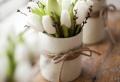 88 fabelhafte Frühlingsbilder zum Inspirieren!