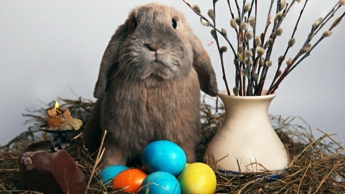 Hintergrundbild-Ostern-mit-einem-Hasen-zwischen-Vase und-Eiern