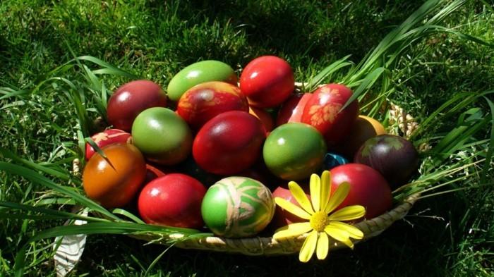 Ostern-Wallpaper-mit-gefärbten-Eiern-im-Korb-auf-einer-Wiese