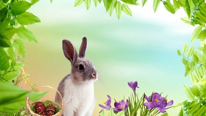 Schönes-Ostern-Hintergrundbild-mit-Hasen-und-Blumen