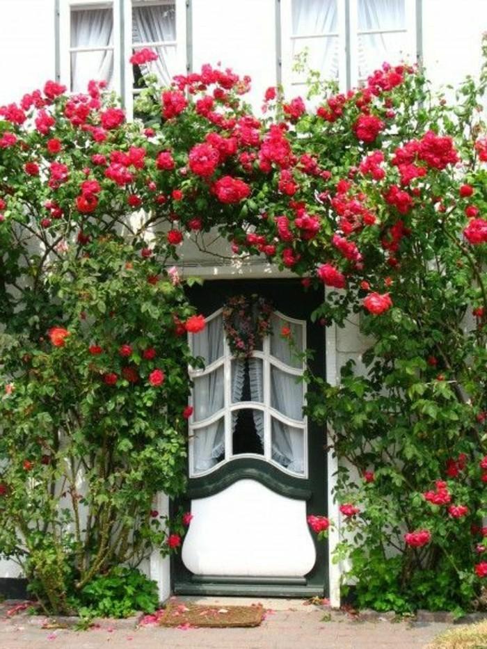 Sylt-Ferienwohnung-von-vielen-blumen-umgeben