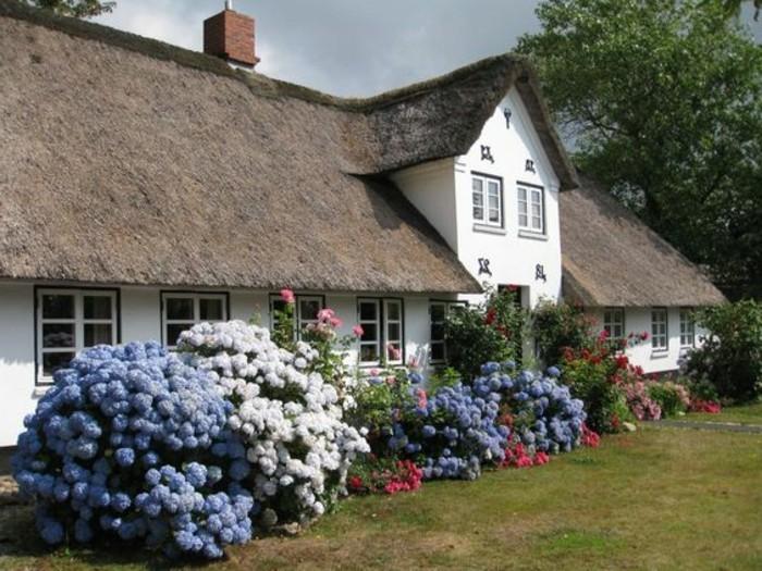 Traum-Ferienwohnung-Sylt-mit-vielen-Blumen